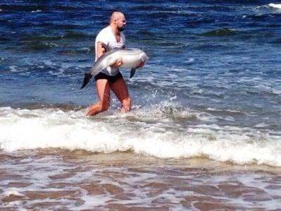 ММА борец спасява делфинче