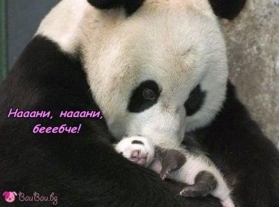 В прегръдките на мама