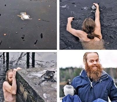 Норвежец се хвърля в замръзнало езеро, за да спаси давеща се патица