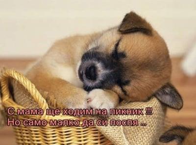 Съботен поспаланко
