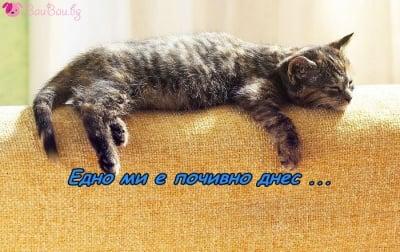 Почивен ден