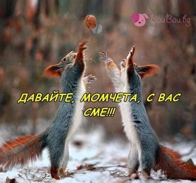 Подкрепа за Националния отбор по волейбол на България