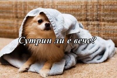 Поспаланко