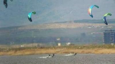 Застрашени от изчезване птици изоставиха яйцата си заради сърфисти в Поморийско езеро