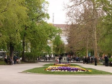 В София започна обработването на тревистите площи срещу кърлежи