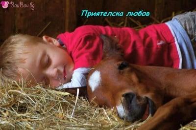 """""""Най - блаженият сън е, когато сме заедно!"""""""
