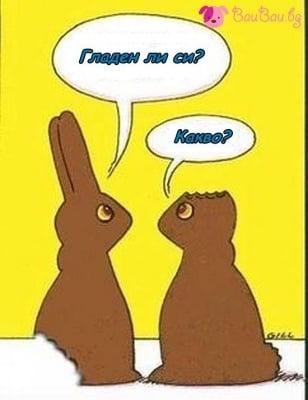 Две шоколадови зайчета си говорят ...