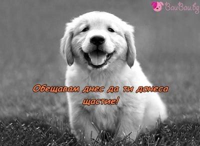 Носител на щастие