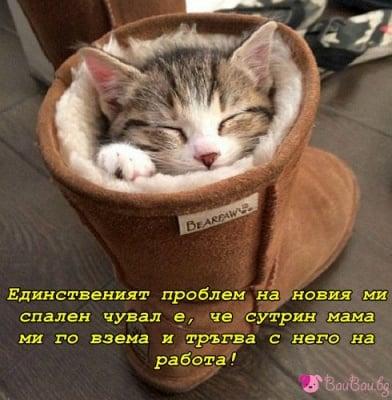 На топло и сигурно място