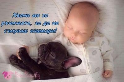 Спящи душици