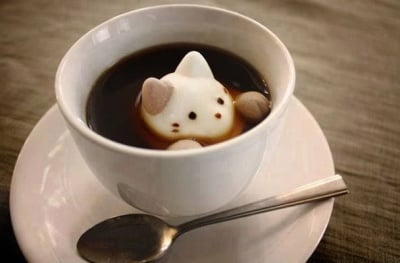 Кафе по котешки
