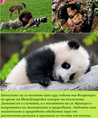 04 Октомври - Световен ден за Защита на животните