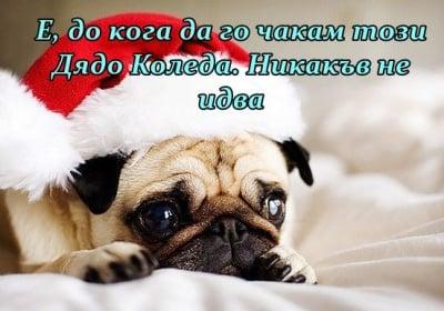 Чака ли чака дядо Коледа ...