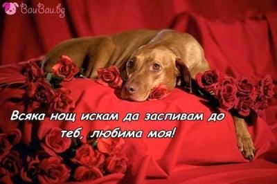 Влюбен в нощите с теб ...