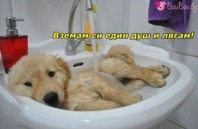 """""""В банята съм"""""""