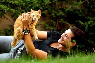 Защо жените харесват мъже, които обичат котки?