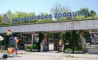 Затвориха зоопарка в София поради внезапната смърт на 6 животни