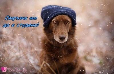 Зимата изглежда няма край...
