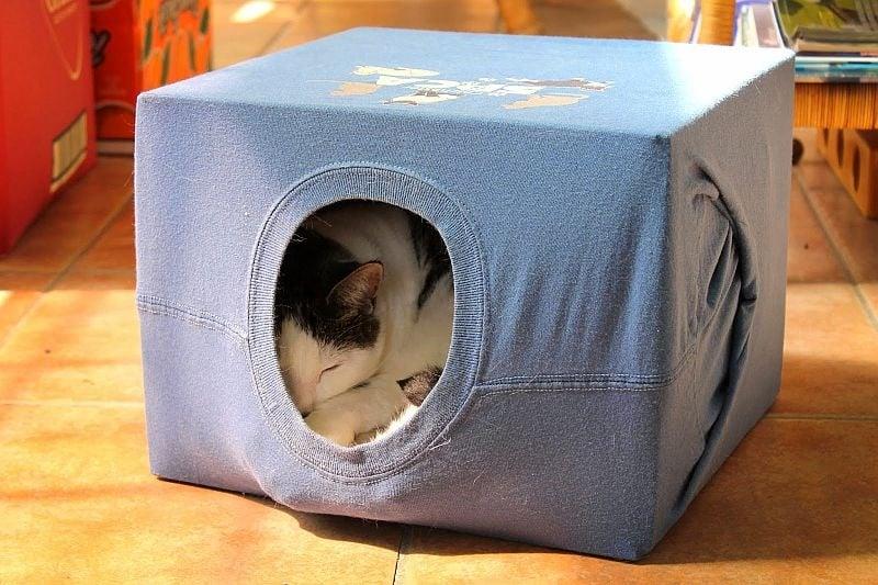 Направете къщичка за котката си
