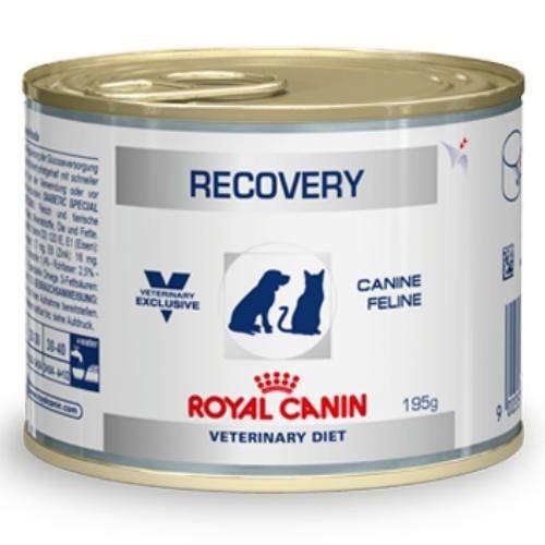 Royal Canin  Recovery - възстановяване при кучета и котки, хранене със сонда 0,195 кг