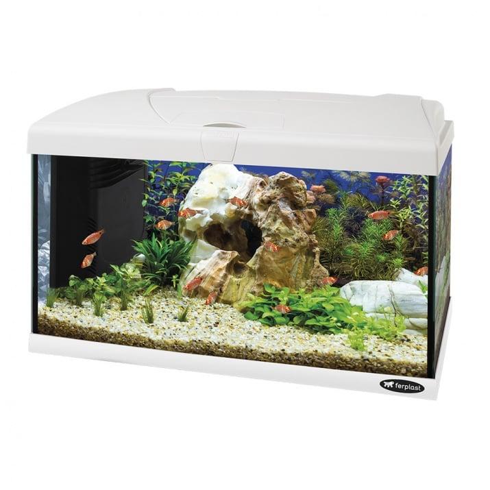 Стъклен аквариум Ferplast CAPRI 60, 60 x 31,5 x вис: 39,5 cm , 60 литра, оборудван, два цвята