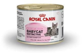 Royal Canin BABY CAT – пастет за котенца от отбиването до 4 месечна възраст 0.195