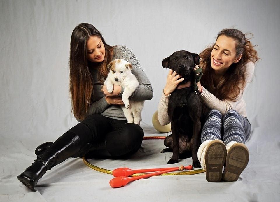 Две кученца за осиновяване