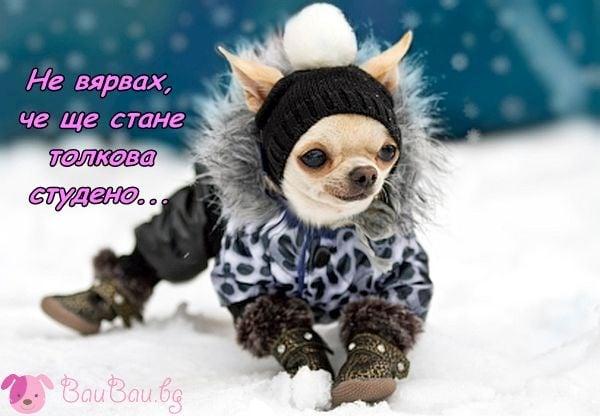 С пълна зимна екипировка :)