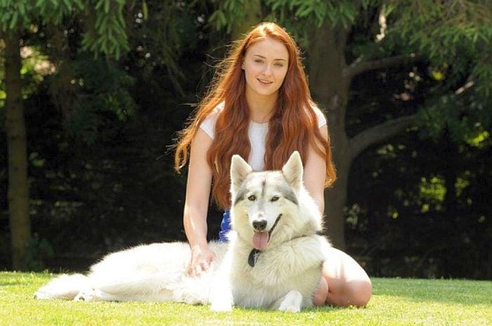 Софи Търнър с кучето от филма