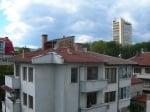 Бременна котка е затворена на покрива на старозагорска сграда месеци наред
