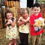 Деца прегръщат кокошки