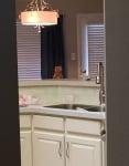 Коте в кухнята