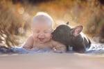 Бебе с булдог