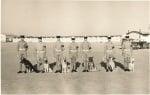 Полицейски кучета в миналото