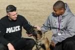 Полицейски кучета сега