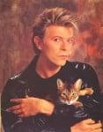 Дейвид Бауи с котка
