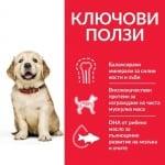 Hills - Science Plan Canine Puppy Large Breed с пилешко - За подрастващи кучета от едри и гиганстки породи, над 25кг, от отбиването до 18 мес. Бременни и кърмещи кучета - 2.5кг; 16.00кг