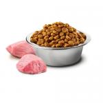 N&D ADULT MINI PUMPKIN - пълноценна храна за кучета от дребни породи с тиква, с пиле и нар - различни разфасовки