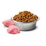 N&D ADULT MED&MAXI PUMPKIN 12KG-пълноценна храна за0 кучета от средни и големи породи с тиква с агнешко и боровинки