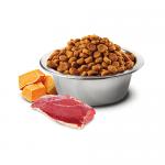 N&D CAT GRAIN FREE PUMPKIN DUCK & CANTALUPE ADULT – пълноценна храна за котки над 1 година, с тиква, патица и пъпеш -0.300кг; 1.500кг