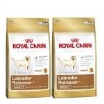 """Labrador Retriver Adult"" - Храна за Лабрадор Ретривър над 15 месеца"