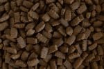 Храна за кучета от дребни породи ХИТ МИНИ - 10.00кг