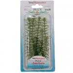 Tetra Anacharis - Изкуствено растение в два размера
