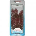 Tetra Red Foxtail - Изкуствено растение в три размера