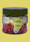 JR Terra – Ягоди