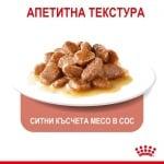Пауч за за котки в зряла възраст за контролиране поведението на просене на храна Royal Canin Appetite Control 85гр