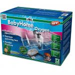 JBL BabyHome Oxygen - ваничка за живораждащи риби с аерация
