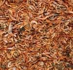 JR-FARM Висококачествена храна за костенурки, богата на протеини. - различни разфасовки