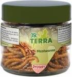 """""""JR Terra"""" – Бели червеи, богата на протеини храна за земноводни и влечуги"""