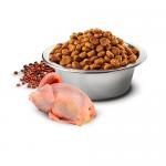 N&D QUINOA SKIN & COAT- Пълноценна храна с киноа за кучета в зряла възраст над 1г. за всички породи при чувствителен стомах, за здрава кожа и козина- с пъдпъдък, кокос и кукума- три разфасовки